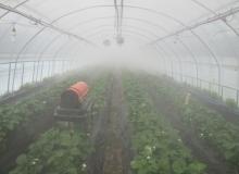[영주]고온기 시설하우스 재배 기술보급